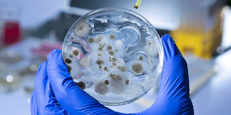 Coronavirus updates for June 19